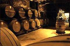 COGNAC PRIVATE WINE TOUR FROM BORDEAUX