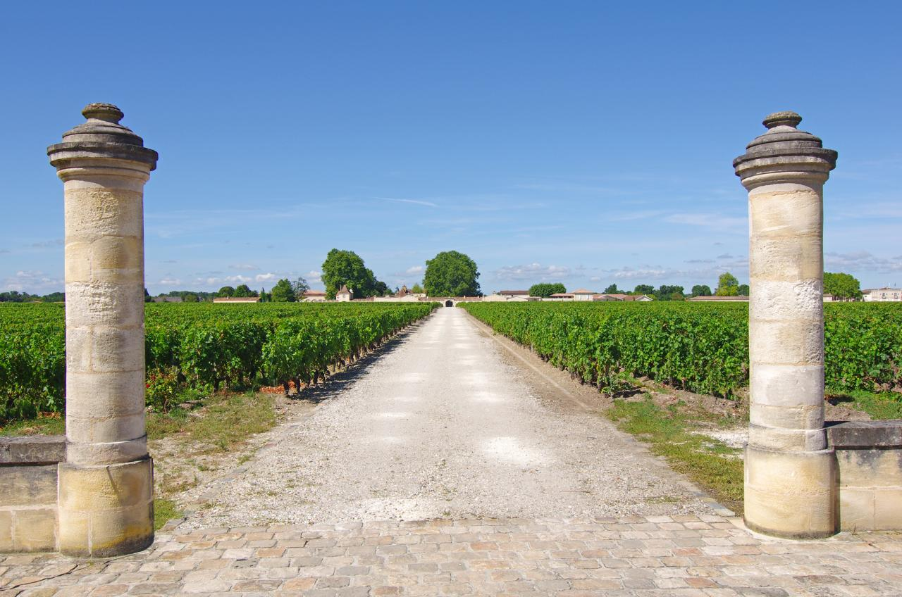 FROM BORDEAUX TO MARGAUX TRANSFER