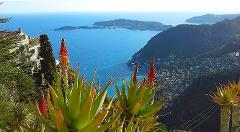 EZE, MONACO & MONTE CARLO PRIVATE HALF DAY TOUR FROM NICE