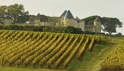 PRIVATE WINE TOUR FROM BORDEAUX FULL DAY