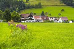 FREIBURG & THE BLACK FOREST PRIVATE TOUR FROM STRASBOURG