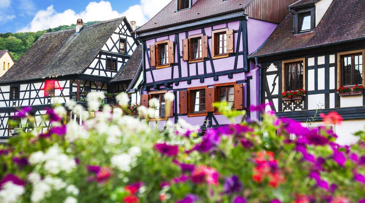 FROM STRASBOURG TO COLMAR SIGHTSEEING TRANSFER