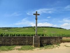 SPECTACULAR WINES OF BURGUNDY - SHARED MULTI DAY PACKAGE FROM BEAUNE
