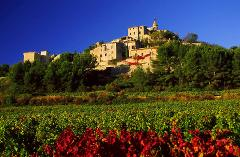 BEST OF PROVENCE HALF DAY TOUR FROM AVIGNON