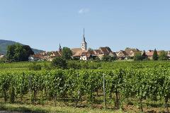 """GRANDS CRUS"" WINES OF ALSACE TOUR FROM STRASBOURG"