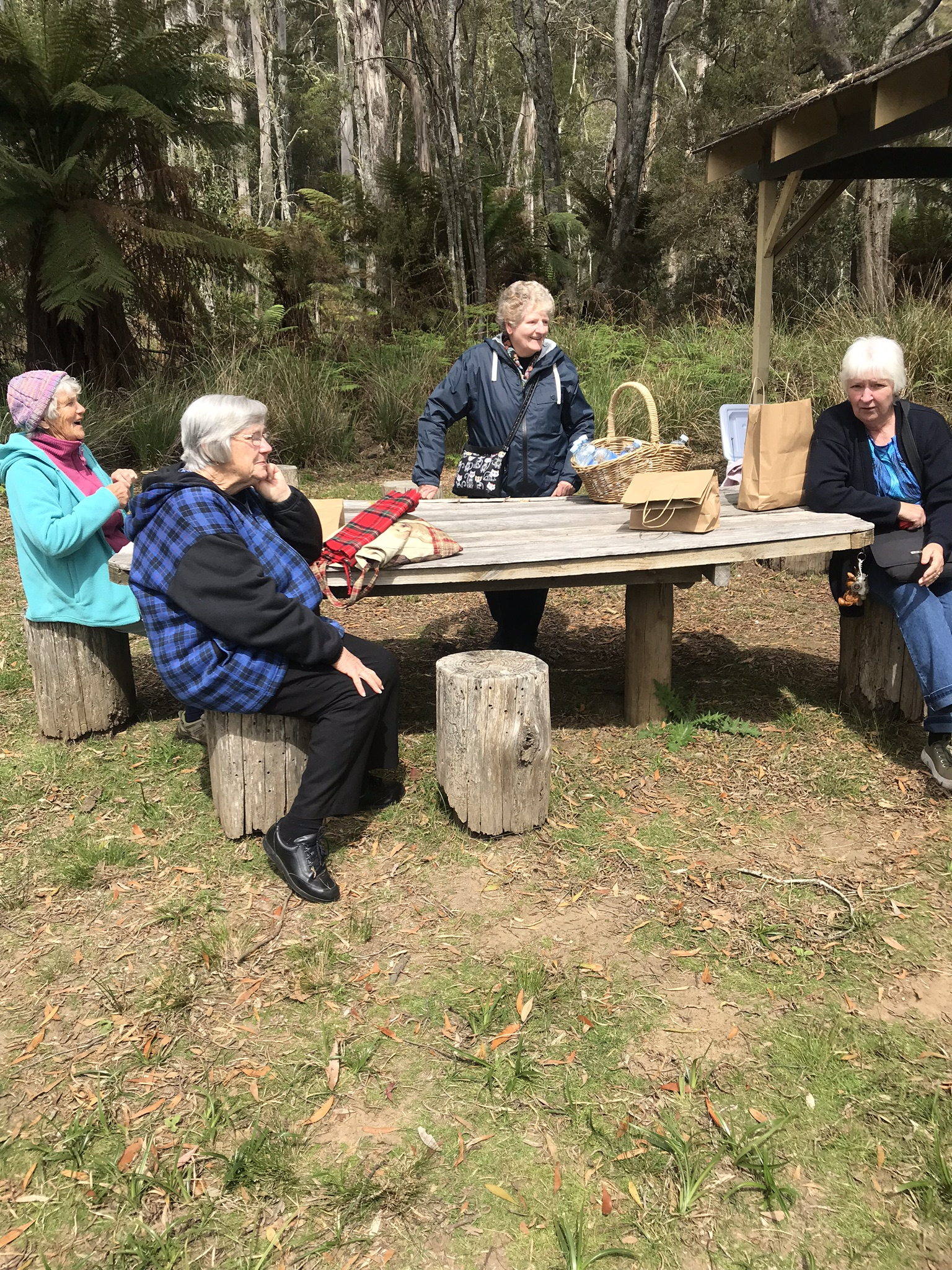 BYO FOOD, DRINKS  PICNIC FOREST CRUISE 3-4 hr