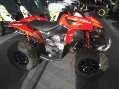 Can Am Renegade 570cc Quad Tour - Deep Desert Ride (4 hours)
