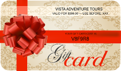 Gift Card $399