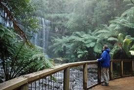 Russell Falls – Bonorong – Salmon Ponds Tour Tasmania Australia