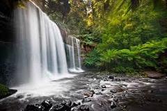 Mt Wellington - Royal Botanical Gardens - Bonorong - Russell Falls National Park