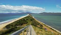 Bruny Island Food & Mt Wellington Tour
