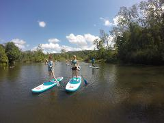 Standup Paddle Boarding - Private Lesson