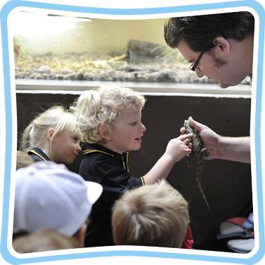 Close Encounters Tour at EcoWorld Aquarium & Wildlife Rehabilitation Centre