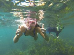 Manly Snorkel Walk and Talk Tour - Private Tour