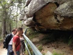Sydney to Ku-ring-gai Chase Wildlife Adventure
