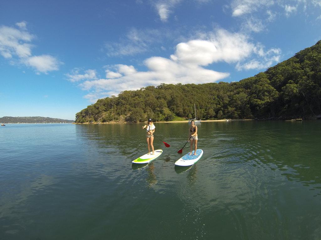 Pittwater Paddle Board Safari