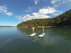 Pittwater Paddle Board Safari