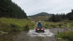 Quad Bike Tour - Bayview Circuit