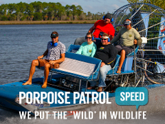 Gulf Airboat Ride & Dolphin Quest - Homosassa