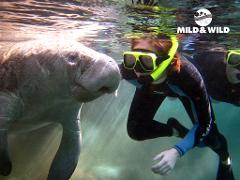 Private Heated Houseboat Manatee Tour (4 hr) - Homosassa