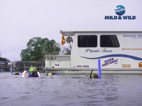 Semi-Private Heated Houseboat Manatee Tour (4 hr) - Homosassa
