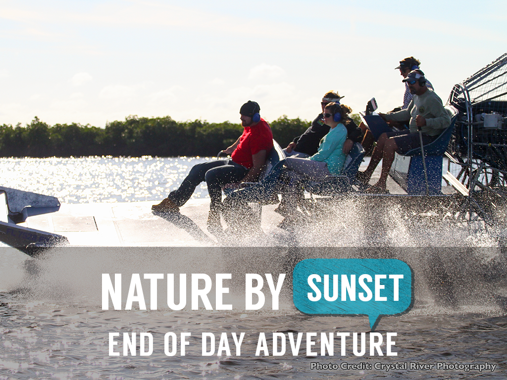 The Safari Sunset Airboat Tour - Homosassa