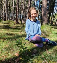 Forest Bathing Adventure for Kids (8 Years+)