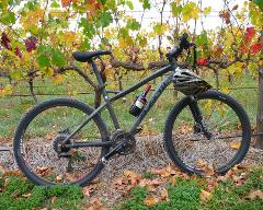 Hills, Vines and Wines by mountain bike