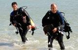 Navy Pier Dives