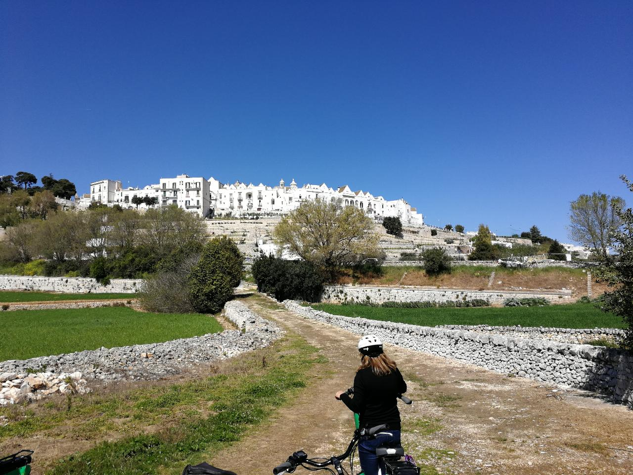 Bike tour: From the old town to the winery