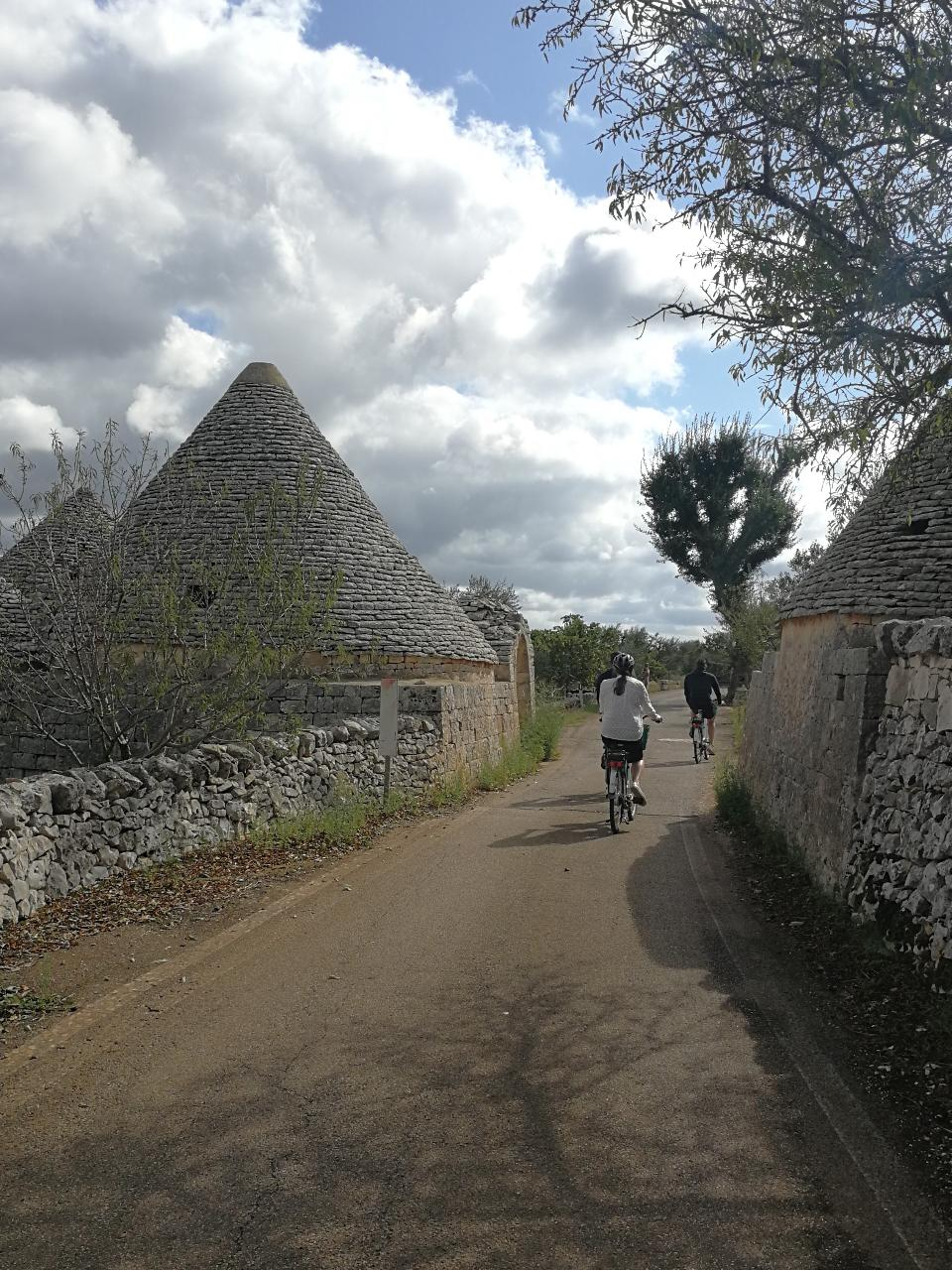Bike tour: From the old town to the olive oil mill