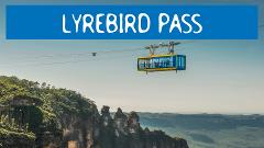 LYREBIRD PASS - Hop On Hop Off + Scenic World