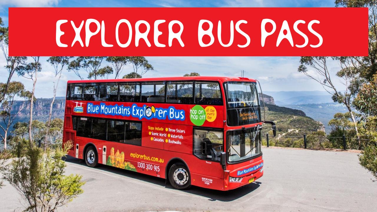 EXPLORER BUS PASS - Hop On Hop Off full day pass