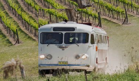 Vineyards in Vintage Style - Megalong Valley Winery Tour in your own Retro Clipper Coach
