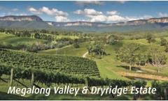 Day Tours: Megalong Valley & Dryridge Estate