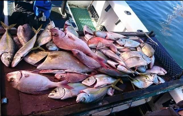 Fishing Charter 8 hr