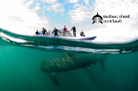 Hebrides Islands & Wildlife