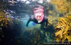 Snorkel Diver Course