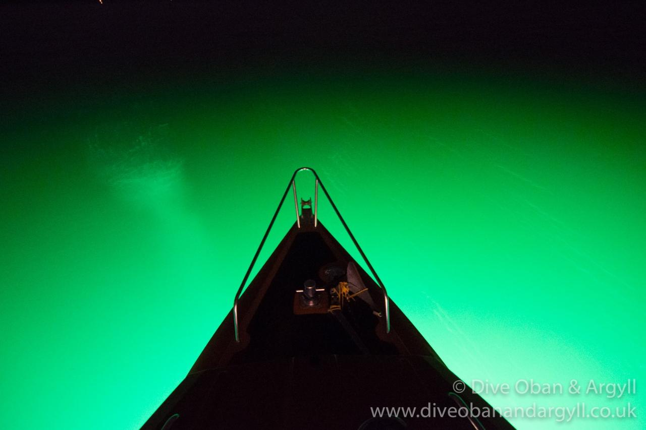 Floodlight Night Dive  -SS Breda