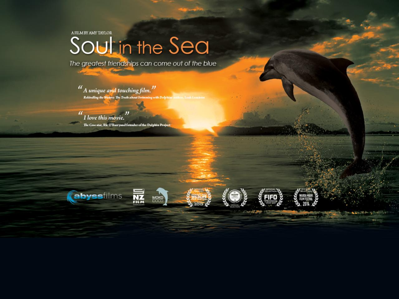 Soul in the Sea Documentary