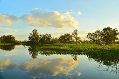 Kakadu Wetlands Tour & Cruise