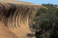 Wave Rock 1/2 Day