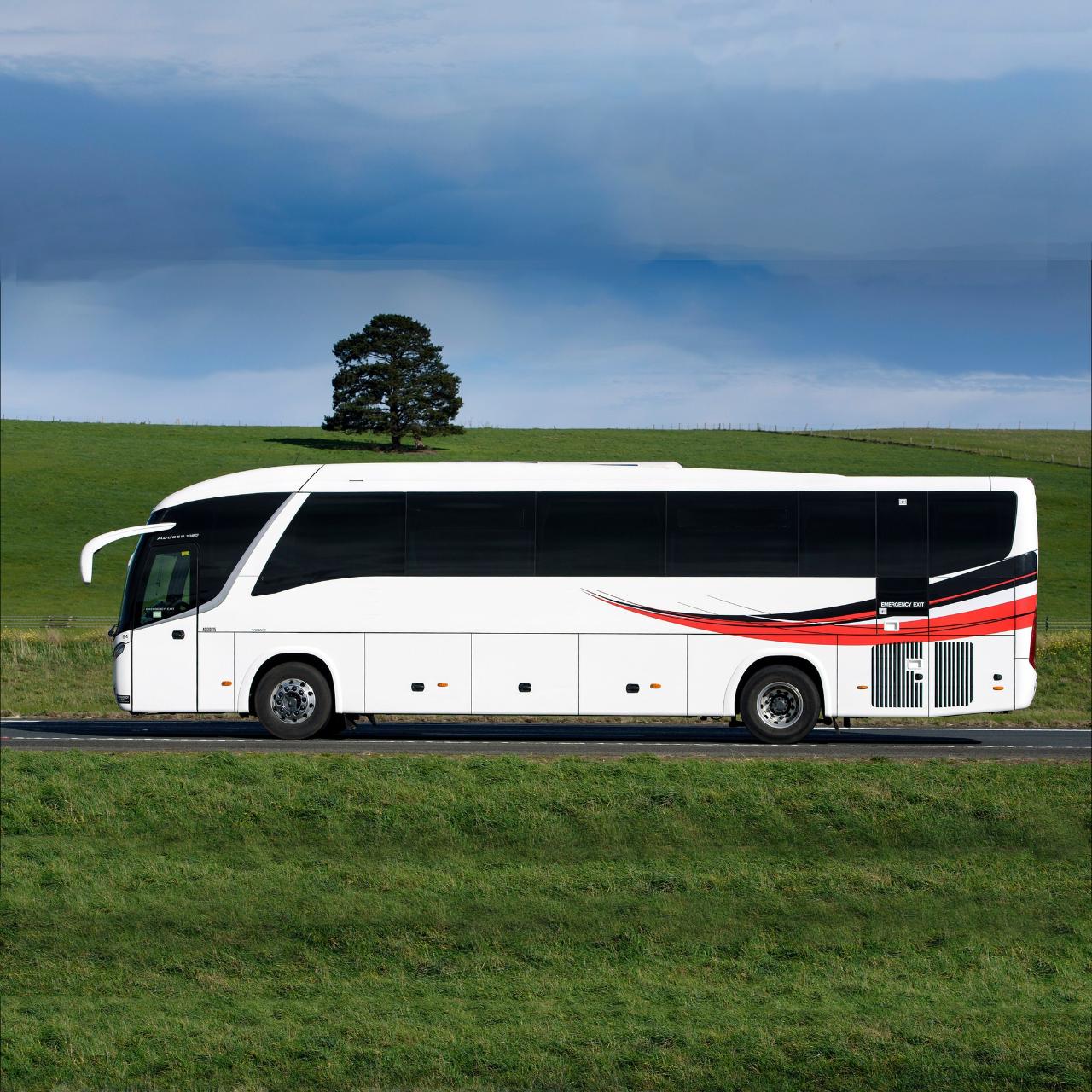 Fringe @ Molly's | Bus Charter