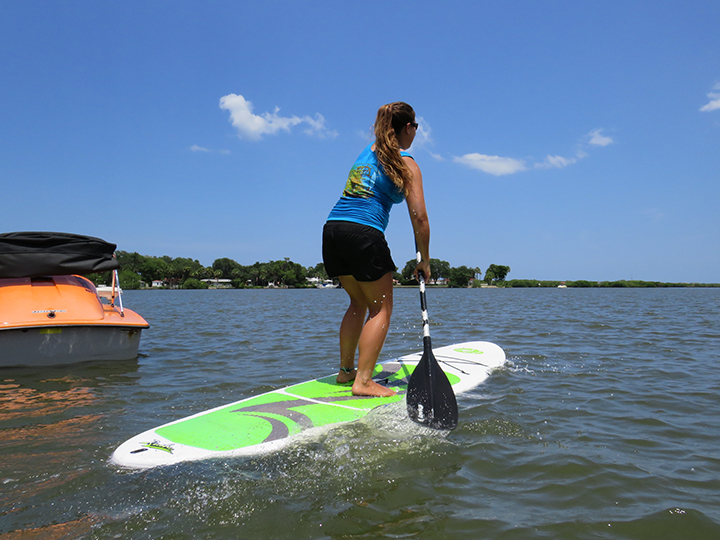 Stand-Up Paddle Board - 1/2 Hour