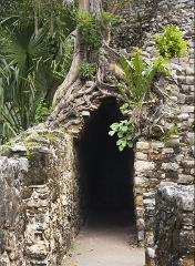 Coba Mayan World