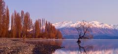 Queenstown Private Tours, Remarkable Scenic Tours McGinness