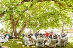Spring Wine & Food Festival 2019 (FESTIVAL TICKET)