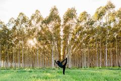 GAL-ENTINES Day Yoga in the Vines + Wellness Brunch
