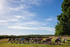 GAL-ENTINES Weekend Yoga in the Vines + Wellness Brunch