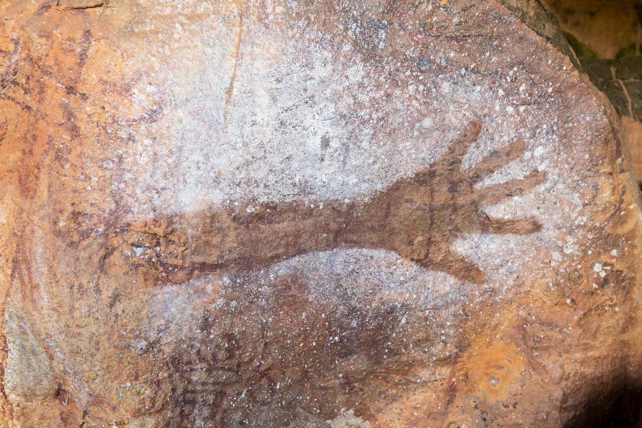 2 Day Cooktown Aboriginal Rock Art and Rainforest